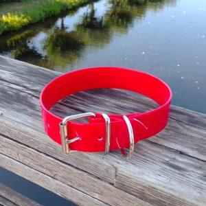 Collar Biothane Gold rojo ancho cinta 3,8 cm hebilla rulo