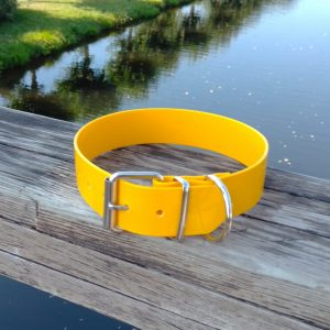 Collar Biothane amarillo crema ancho cinta 3,8 cm hebilla rulo